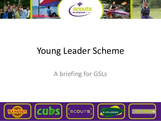 Young Leader Scheme A briefing for GSLs 1