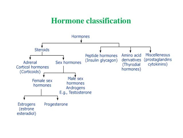 steroid effects on hormones