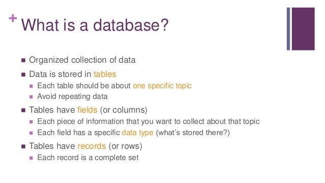 Database Basics Lingo 6 What Is