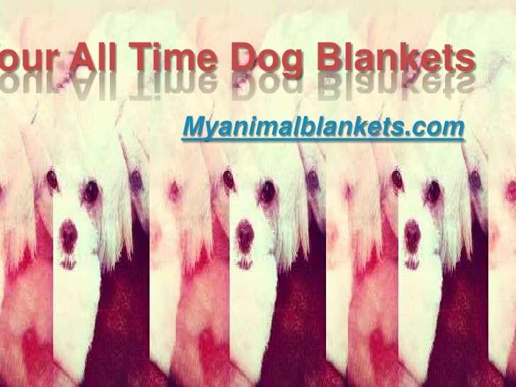 our All Time Dog Blankets         Myanimalblankets.com