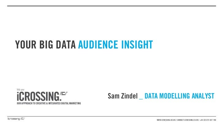 YOUR BIG DATA AUDIENCE INSIGHT                    Sam Zindel _ DATA MODELLING ANALYST                                    W...