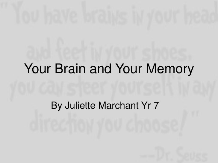 Your Brain and Your Memory    By Juliette Marchant Yr 7