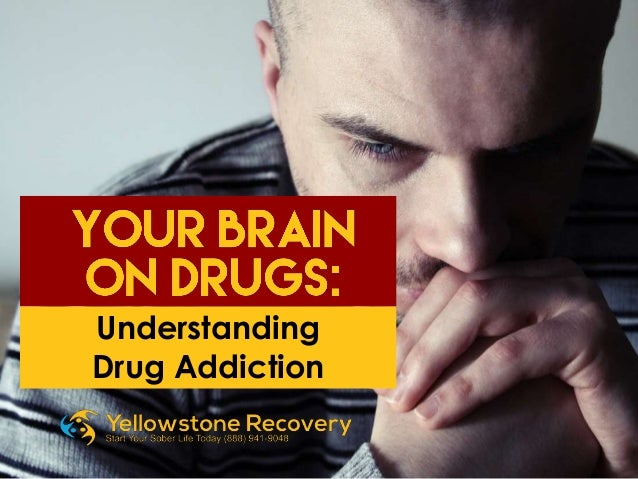an understanding of heroin Understanding addiction how addiction hijacks the brain a person addicted to heroin may be in danger of relapse when he sees a hypodermic needle.