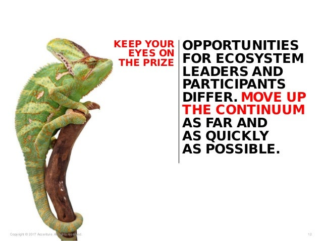 Copyright © 2017 Accenture. All rights reserved. 12 KEEP YOUR EYES ON THE PRIZE OPPORTUNITIES FOR ECOSYSTEM LEADERS AND PA...