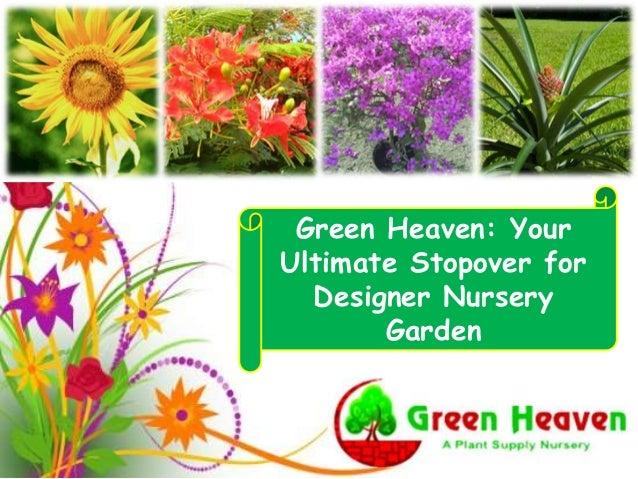 Green Heaven: Your Ultimate Stopover for Designer Nursery Garden