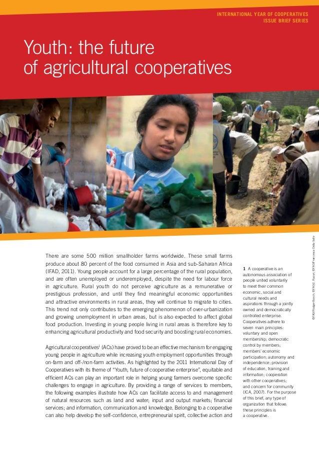 International Year of Cooperatives                                                                                        ...
