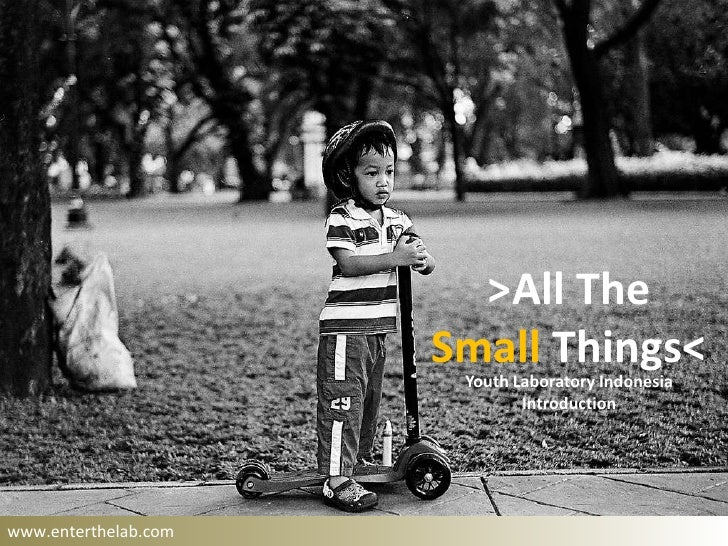 >All The                      Small Things<                       Youth Laboratory Indonesia                              ...