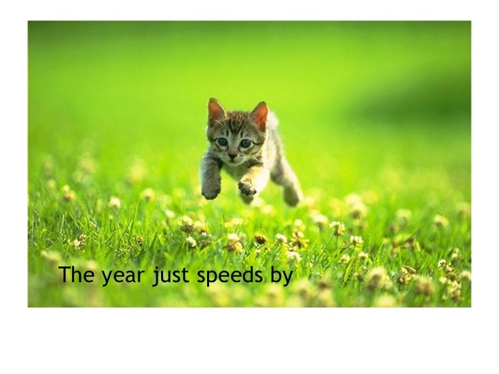 The year just speeds by
