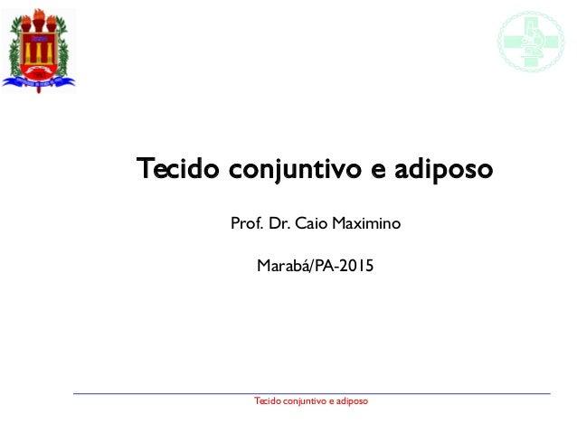 Tecido conjuntivo e adiposo Tecido conjuntivo e adiposo Prof. Dr. Caio Maximino Marabá/PA-2015
