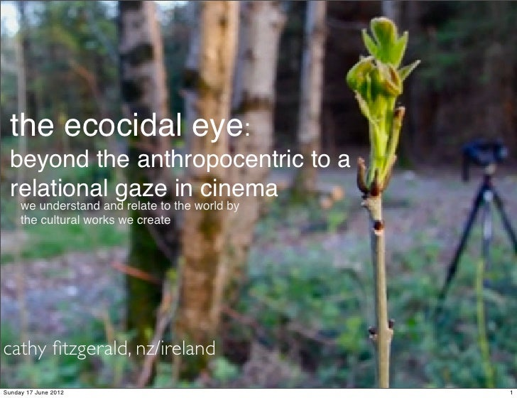 the ecocidal eye:  beyond the anthropocentric to a  relational gaze in cinema     we understand and relate to the world by...