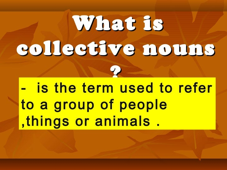 What is collective nouns ? -  is the term used to refer to a group of people ,things or animals .