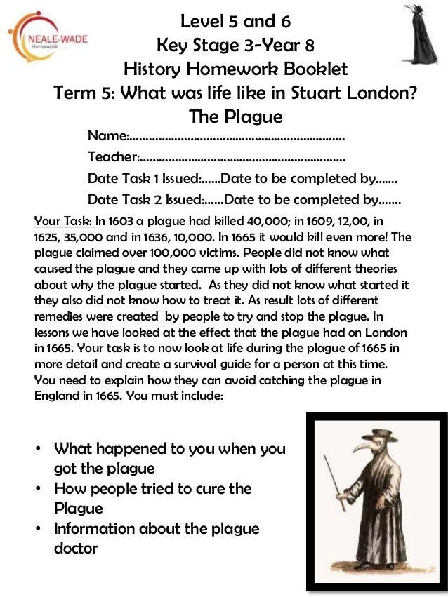 Year 8 history homework