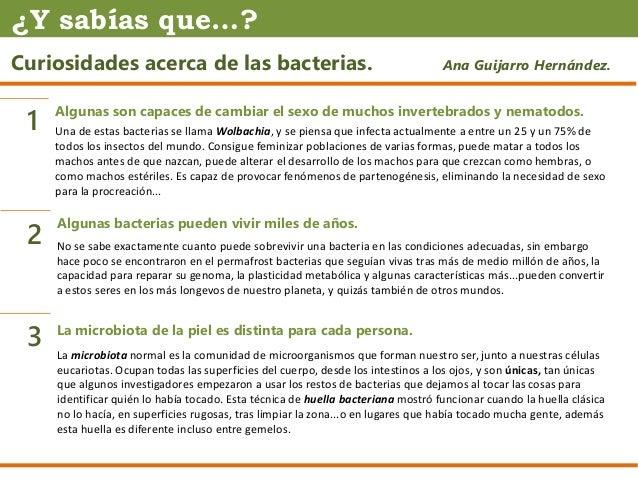 Curiosidades acerca de las bacterias. Ana Guijarro Hernández. Algunas son capaces de cambiar el sexo de muchos invertebrad...