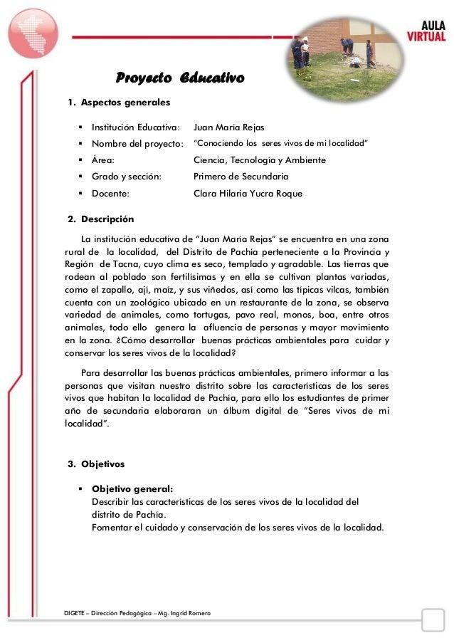 DIGETE – Dirección Pedagógica – Mg. Ingrid Romero  Proyecto Educativo  1. Aspectos generales   Institución Educativa:  Ju...