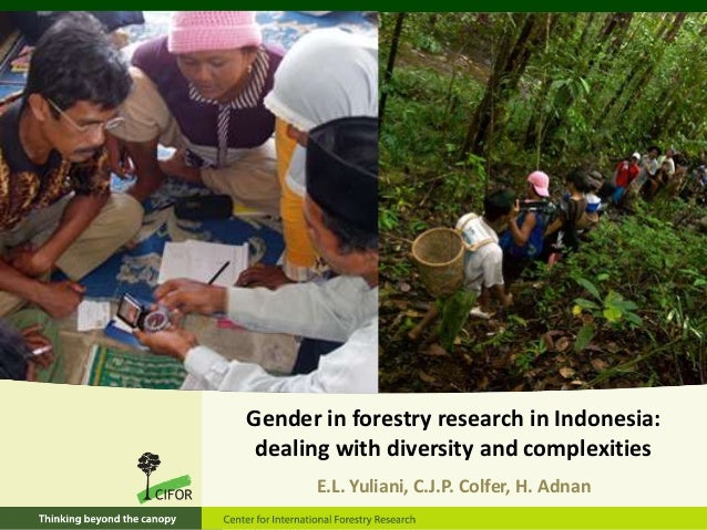 6/16/2013 1Gender in forestry research in Indonesia:dealing with diversity and complexitiesE.L. Yuliani, C.J.P. Colfer, H....