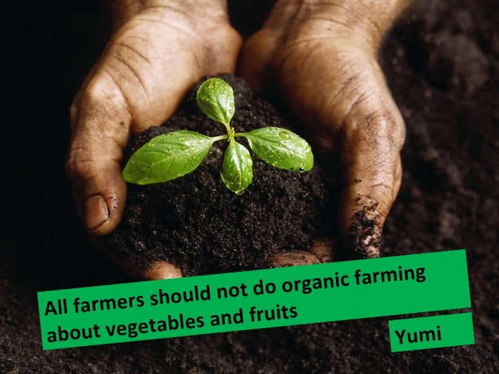 All farmers should not do organic farming about vegetables and fruits  Yumi