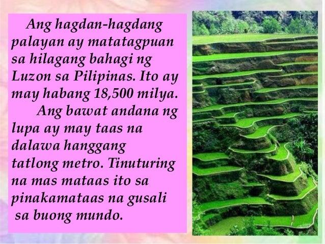 Pinakamalaking bulaklak sa mundo na matatagpuan sa Pilipinas