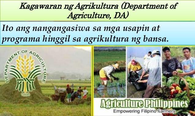 Kalagayan ng agrikultura ng bansa
