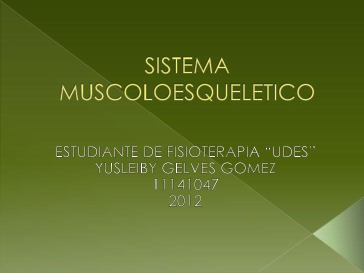  SISTEMA OSEO CARACTERISTICAS DEL SISTEMA OSEO FUNCIONES DEL SISTEMA OSEO CLASIFICACION DE LOS HUESOS