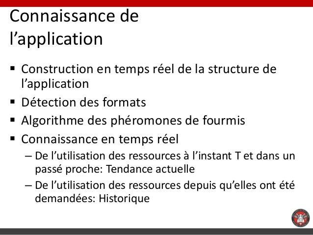 Connaissance del'application Construction en temps réel de la structure de  l'application Détection des formats Algorit...
