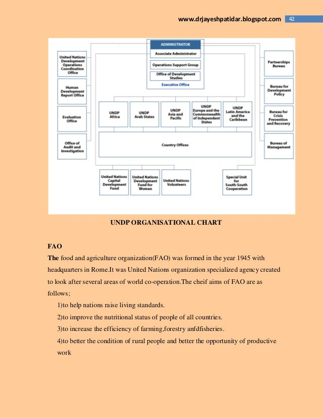 42www.drjayeshpatidar.blogspot.com UNDP ORGANISATIONAL CHART FAO The food and agriculture organization(FAO) was formed in ...