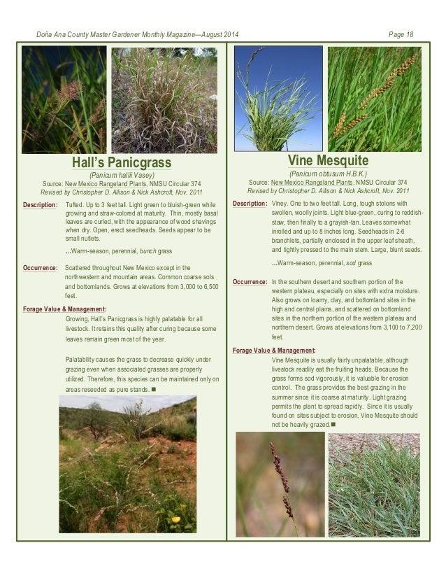 Master Gardeners At Mesilla Valley Bosque Doa Ana County Arizona