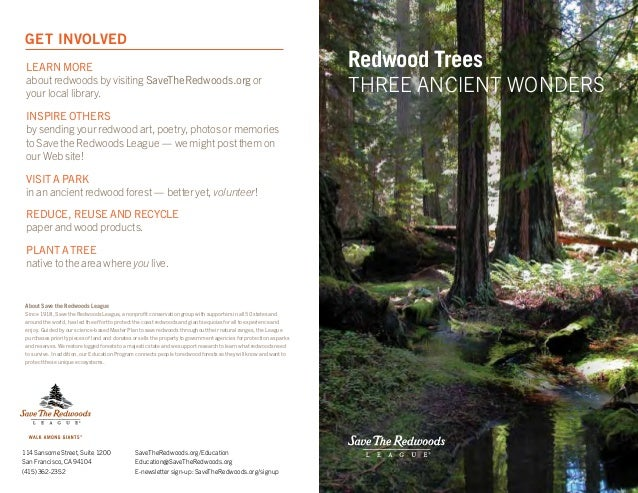Learn more about redwoods by visiting SaveTheRedwoods.org or your local library. Inspire others by sending your redwood ar...