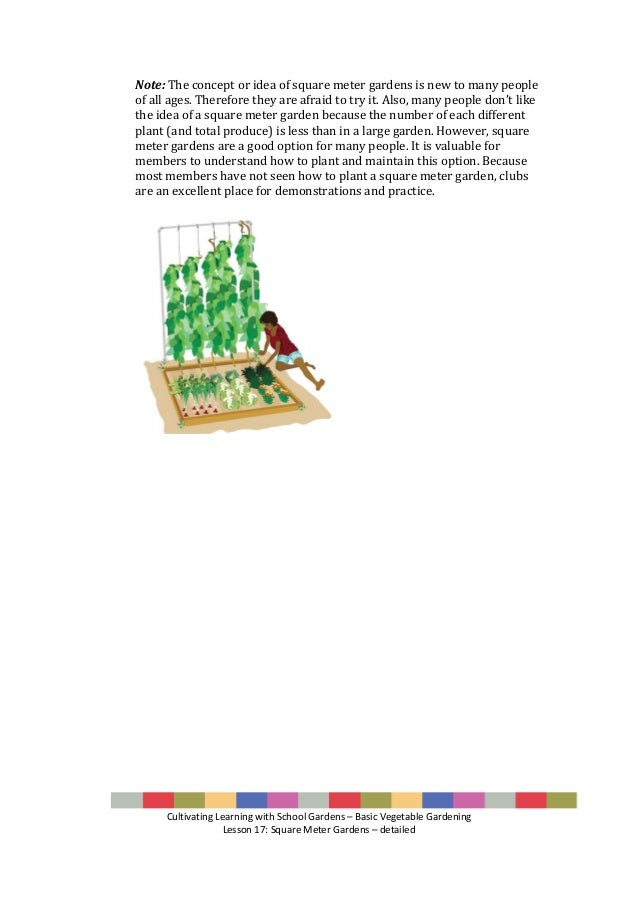 Lesson 17 basic school vegetable gardening square meter gardens - Square meter vegetable garden ...
