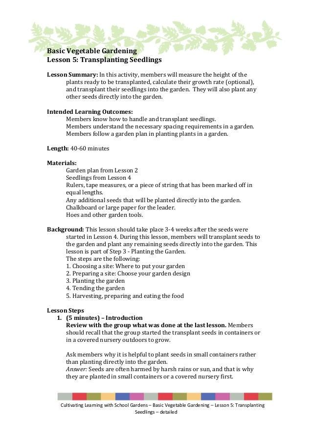 Lesson 5 Basic School Vegetable Gardening Transplanting