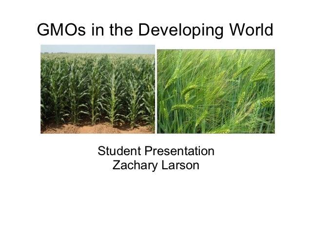 GMOs in the Developing World       Student Presentation         Zachary Larson