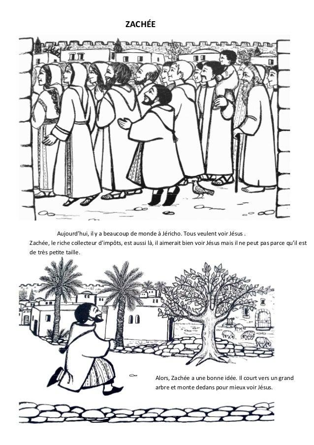 Alors, Zachée a une bonne idée. Il court vers un grand arbre et monte dedans pour mieux voir Jésus. Aujourd'hui, il y a be...