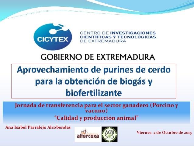 """Jornada de transferencia para el sector ganadero (Porcino y vacuno) """"Calidad y producción animal"""" Viernes, 2 de Octubre de..."""