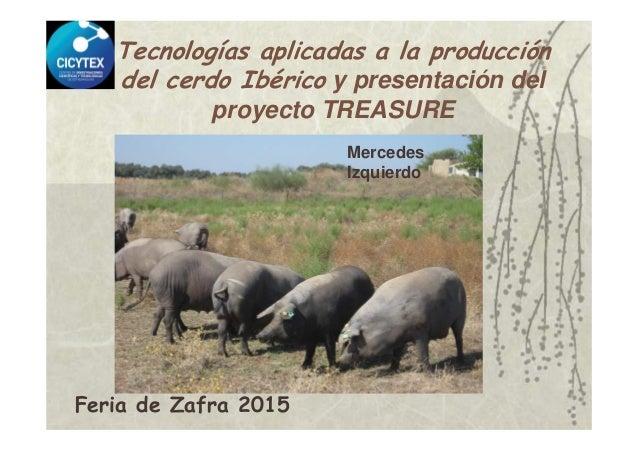 Tecnologías aplicadas a la producción del cerdo Ibérico y presentación del proyecto TREASURE Mercedes Izquierdo Feria de Z...