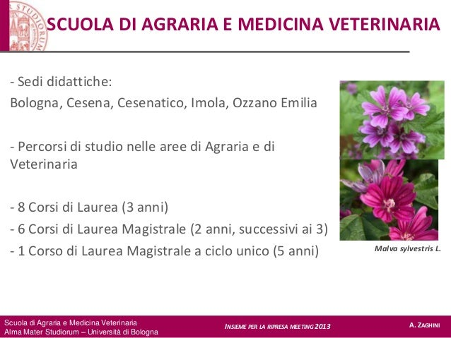 Scuola di Agraria e Medicina Veterinaria Alma Mater Studiorum – Università di Bologna SCUOLA DI AGRARIA E MEDICINA VETERIN...