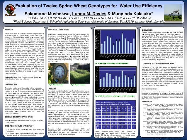 Evaluation of Twelve Spring Wheat Genotypes for Water Use Efficiency                                Sakumona Mushekwa, Lun...