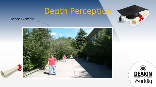 example of perceptual errors in organization Perceptual illusions and brain models : page 1 of 3 [1] download  errors are illusions  for example, the.