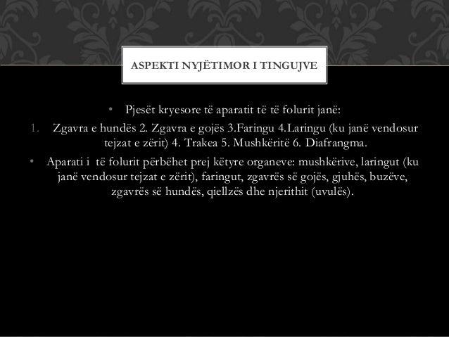 • Pjesët kryesore të aparatit të të folurit janë: 1. Zgavra e hundës 2. Zgavra e gojës 3.Faringu 4.Laringu (ku janë vendos...