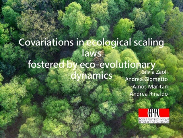 Covariations in ecological scaling laws fostered by eco-evolutionary dynamics Silvia Zaoli Andrea Giometto Amos Maritan An...