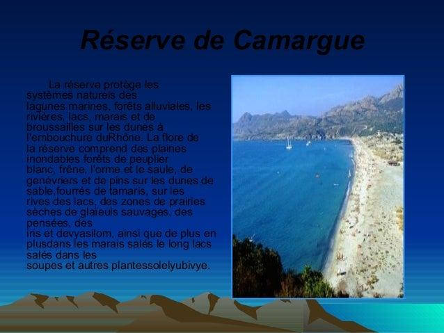 RéservedeCamargue La réserve protège les systèmes naturels des lagunes marines, forêts alluviales, les rivières, lacs, m...