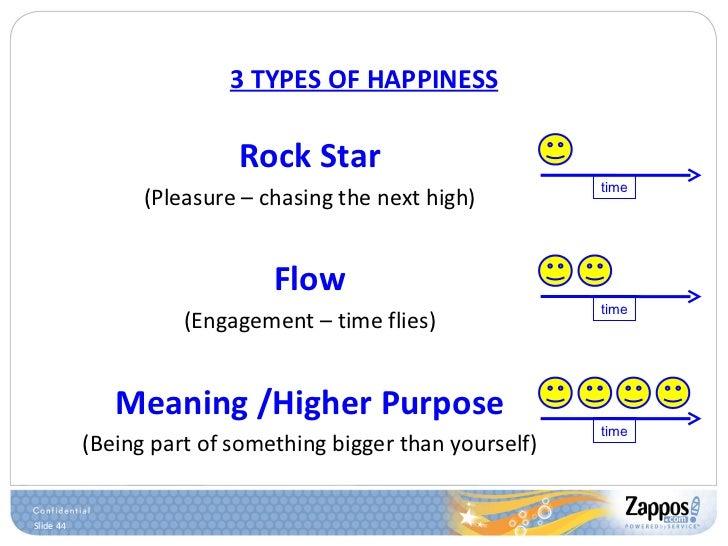 <ul><li>Rock Star </li></ul><ul><li>(Pleasure – chasing the next high) </li></ul><ul><li>Flow </li></ul><ul><li>(Engagemen...