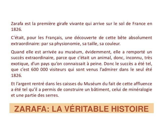 ZARAFA: LA VÉRITABLE HISTOIRE Zarafa est la première girafe vivante qui arrive sur le sol de France en 1826. C'était, pour...