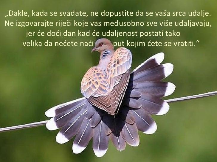 """"""" Dakle, kada se svađate, ne dopustite da se vaša srca udalje. Ne izgovarajte riječi koje vas međusobno sve više udaljavaj..."""