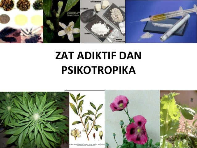 Lili Andajani, S.Pd, M.Pd  ZAT ADIKTIF DAN  PSIKOTROPIKA