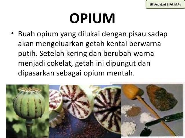 Lili Andajani, S.Pd, M.Pd  OPIUM  • Buah opium yang dilukai dengan pisau sadap  akan mengeluarkan getah kental berwarna  p...