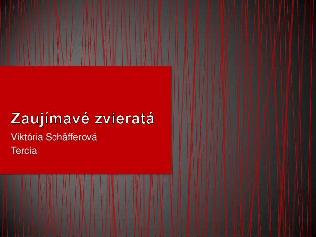 Viktória Schäfferová Tercia