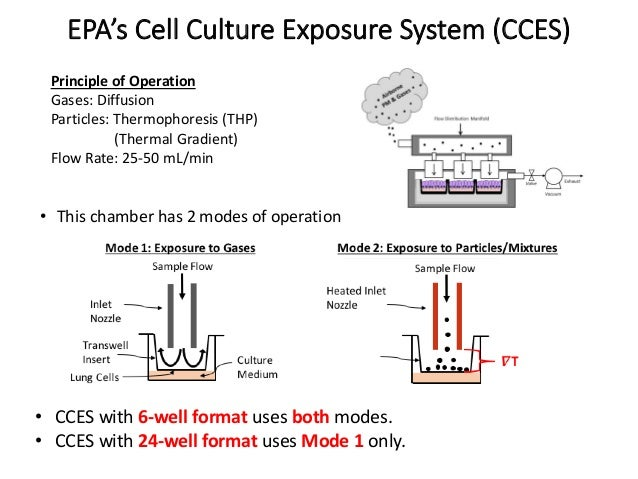 • This chamber has 2 modes of operation EPA's Cell Culture Exposure System (CCES) Principle of Operation Gases: Diffusion ...