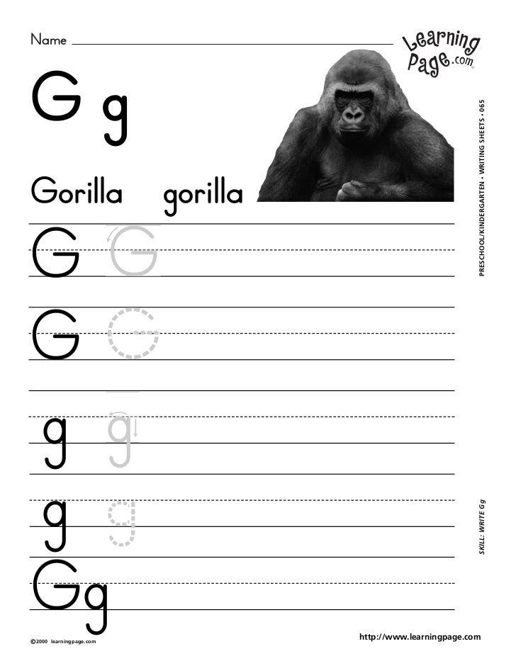 NameGg                                                     WRITING SHEETS • 065Gorilla gorilla                            ...