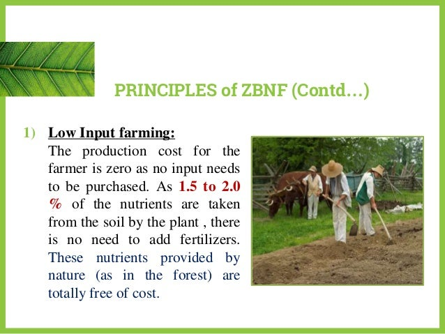 Principles Of Agriculture Food And Natural Resources