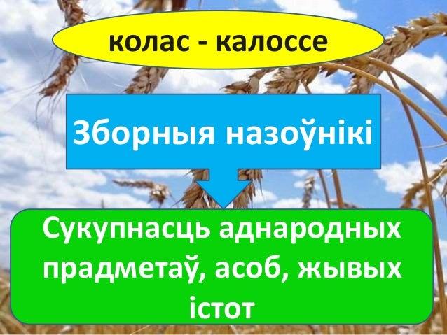 Zbornyya i rechywnyya nazowniki Slide 3