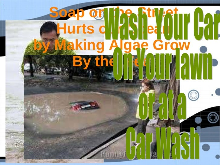 Soap on the Street Hurts our Ocean by Making Algae Grow  By the  Feet Wash  Your Car  On Your lawn or at a Car Wash